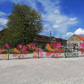 BUGA Erfurt 2021, Petersberg, Erfurt, Thüringen