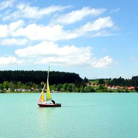 Segeln, Baden, Surfen, Ageln, Paddeln, Schwimmen ...