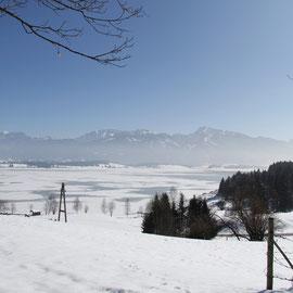 Winterparadies