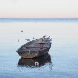 Boot in der Kurischen Nehrung