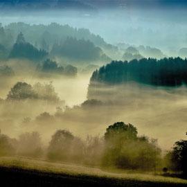 Peter Hoffmann, Nebel im Tal