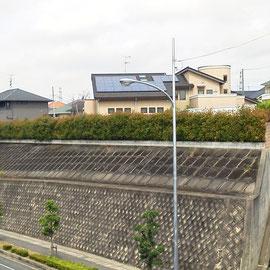 レッドロビン生垣剪定-奈良県香芝市-作業前