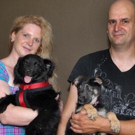 Bei steffi-hilft warten Hunde und Katzen auf ein neues Zuhause.  (Foto: Barbara Zabka)