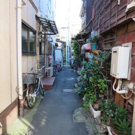 狭い路地に古い家が立ち並んでいる