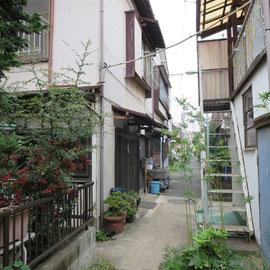 古い家屋が道の両側に建っている。いずれも人が住んでいた