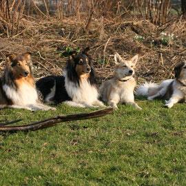 Die Geburtstagsgesellschaft: Meggy, Klara, Bebi, Freddy