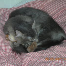 März 2007 in Kathi's Bett