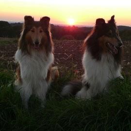 Traumhafter Sonnenuntergang! Klara & Meggy