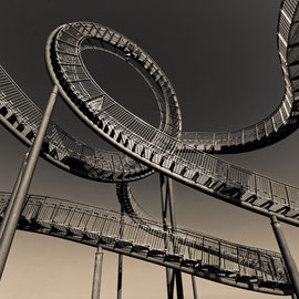 """Tiger and Turtle (7-10374) B+W"" - Copyright by Franz Walter"