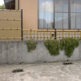 人口竹壁の設置