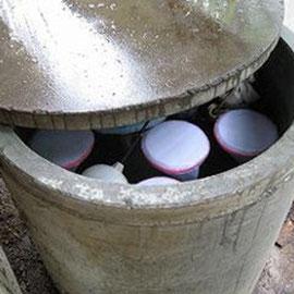 子牛の飲み水にマナチュラ投入。洗濯ネットに入れています。