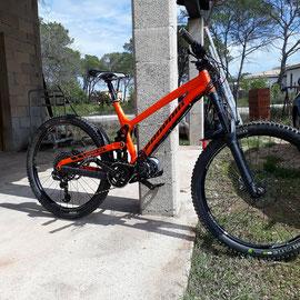 propain e-bike