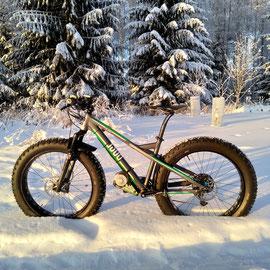 fat bike electric