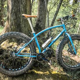 fat bike e-bike
