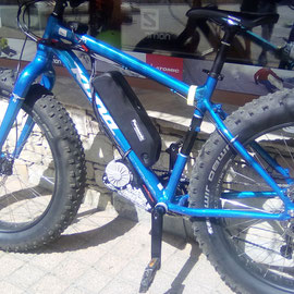 fat bike with electric engine