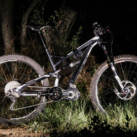 freeride electric bike