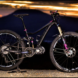 giant electric bicycle kit