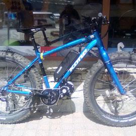 engine for fat bike