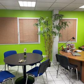 Idée de couleur pour un bureau nuance Vert/Jaune