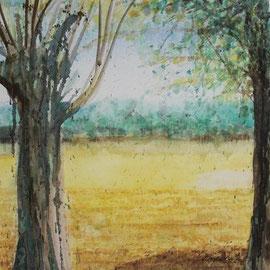 Rednitzgrund, Wasserfarbe, 50x50, 2001