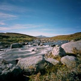 Norway Dovrefjell