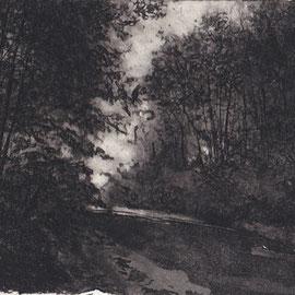Forêt de Chaource