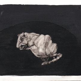 Le rat de la bobine