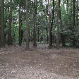 キャンプサイト/ボーイ隊の訓練キャンプを行っています。