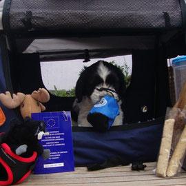 Lino mit seinem Reisegepäck