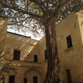 Lecce, ex Conservatorio di Sant'Anna
