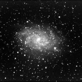 M33 - dans le triangle (13 poses de 65 s à 3200 iso- 4 darks- pas de flat - Lucy 19/07/2018 - Loïc - lunette achromatique 150/750 / HEQ5 motorisée non guidée/APN pentax K50  - traitement iris/lightroom) - N&B que sous lightroom, à reprendre sous IRIS