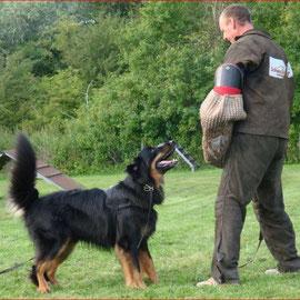 Giedou beim Schutzdienst mit Sepp Wild