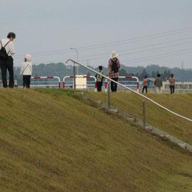 信濃川堤防を歩く
