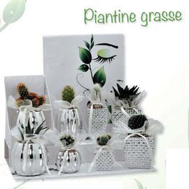 Piantine Grasse