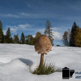 Winter im Herbst 2013 - © Holger Hütte 2013