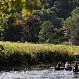 Descente en Kayak sur la Semois