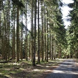 Aanbevolen wandeling: l'Antrogne. Vertrek te voet van aan de gite, meerdere varianten mogelijk.