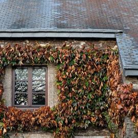 Herbeumont - maison de village ardennais