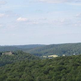 Le château-fort d'Herbeumont