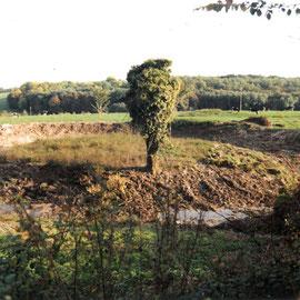 Motte du Salitre à CHÂTEAU-SUR-ALLIER