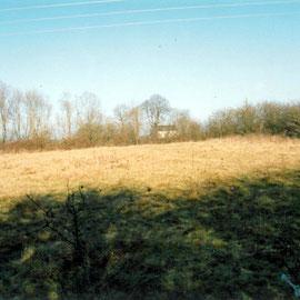 Motte de Chavy à LURCY-LEVIS