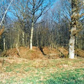 Motte de Soussarin à LURCY-LEVIS