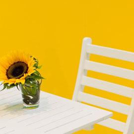 Kunststoff-Gartenmöbel mit Bergotec Kunststoff-Fenster-Lack wieder wie neu