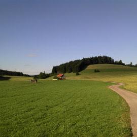 Meist sanfte Hügel. Und hoffentlich blauer Himmel