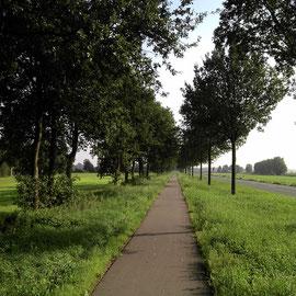Kiolometerlang geradeaus nach Tarmstedt.