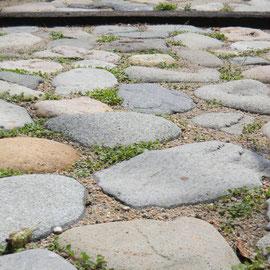 河原の石をアプローチに使っています。歩きやすいように並べるのも職人さんの素晴らしい技術です。目地にはダイカンドラというグランドカバーの種を蒔きました。 自然に草が生えても可愛らしいですよね。  岡山市北区S様邸 エクステリア フラワーチルドレン