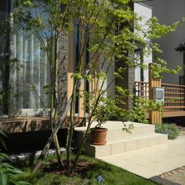 お部屋の目隠しを兼ねたイロハモミジの植栽、足元には芝生のスペースと小さな花壇。少しのスペースでも、緑があると憩いの場になります。                                                         岡山市北区M様邸 エクステリア フラワーチルドレン