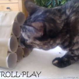 Now, well rested, it's playtime: Surprise your cat with a new DIY toy, made in minutes with some paper rolls.