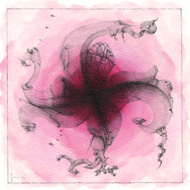 Metamorfosi di un Fiore