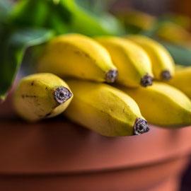 """""""Tage, an denen man plant, Bananen zu essen, könnte man auch als Bananenplantage bezeichnen."""" von Merle S."""